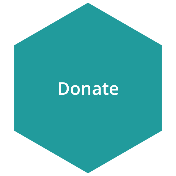 Turquoise donate button